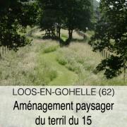 543-Vignette 2